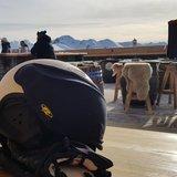 cp skihelm vizier beschermer beschermhoes - CP Skihelm visier schutz