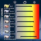 cp skihelm vizier visor visier photochromic - photochromatisch